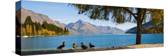 matthew-williams-ellis-autumnal-lake-wakatipu-at-queenstown-otago-south-island-new-zealand-pacific