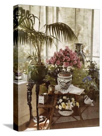 maynard-owen-williams-flower-arrangement