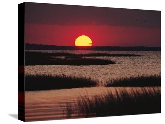 medford-taylor-sunset-over-chincoteague-island-marsh-virginia