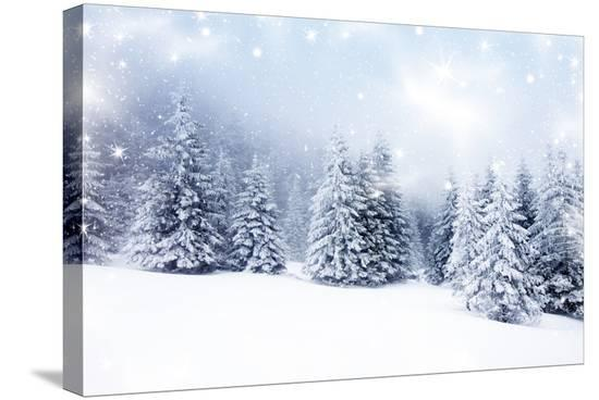 melis-christmas-background-with-snowy-fir-trees