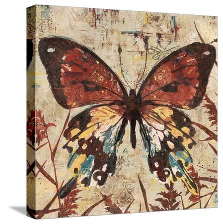 melissa-pluch-butterfly-beauty-2