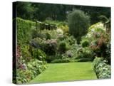 Autumn Garden  Aster  View to Seat Under Pyrus  Aster in Border  Wooden Support  France
