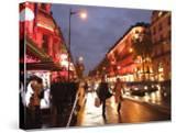 Shoppers along Boulevard Haussmann  Paris  France
