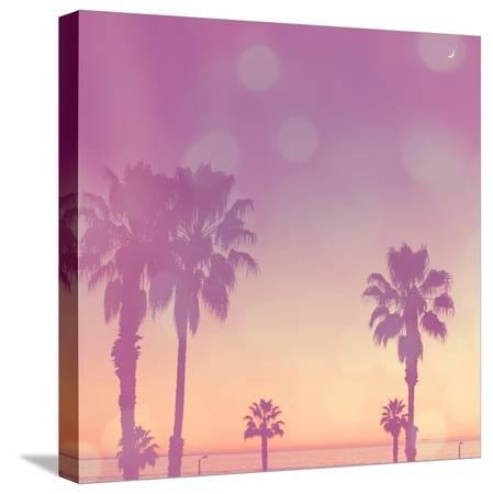 myan-soffia-palm-trees-in-california