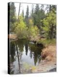 Lake In Sierras