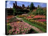 Elizabethan Knot Garden  Shakespeare's Home  Stratford-on-Avon  England