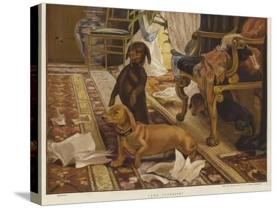 otto-weber-three-dachshunds-around-a-chair-in-a-living-room