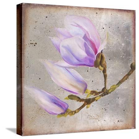 patricia-pinto-magnolia-on-silver-leaf-i
