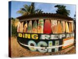 Surfboard Repair Shop  which has a Thriving Trade Due to the Heavy Waves