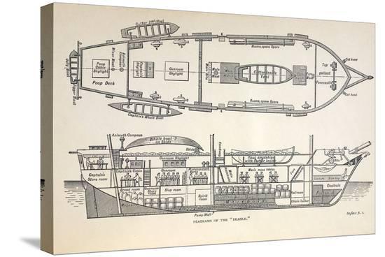 paul-stewart-1832-darwin-s-ship-hms-beagle-plan