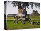 Horse Drawn Carriage Cart and Wooden Barrel  Bodega Juanico Familia Deicas Winery  Juanico