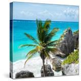 ¡Viva Mexico! Square Collection - Tulum Caribbean Coastline X