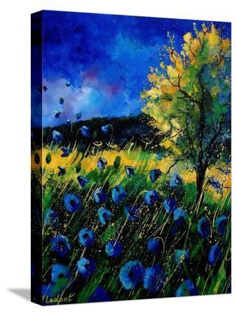 pol-ledent-blue-poppies-67