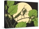 Praying Mantis with Grasshopper