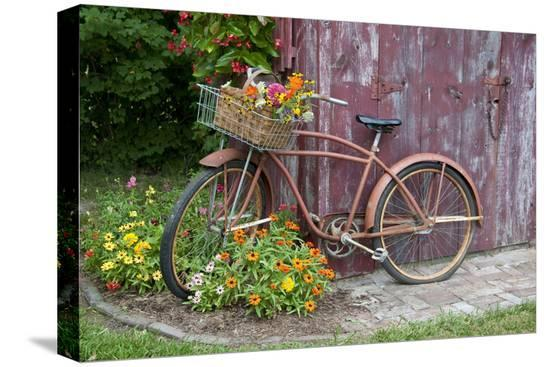 richard-and-susan-day-old-bicycle-with-flower-basket-next-to-old-outhouse-garden-shed-marion-county-illinois
