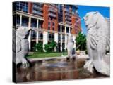Fountain at the Green  Downtown  Charlotte  North Carolina