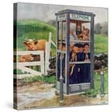 """""""Cub Scouts in Phone Booth """" August 26  1961"""