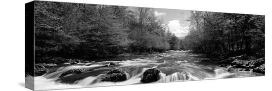 river-flowing-through-rocks-in-a-forest-little-pigeon-river