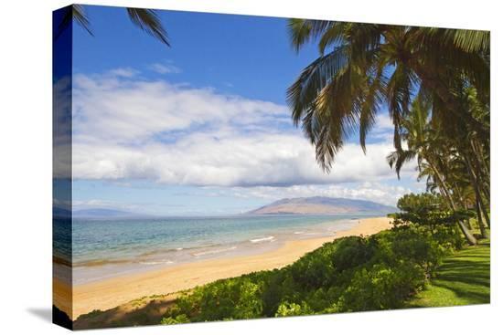 ron-dahlquist-keawakapu-beach-wailea-on-island-of-maui-hawaii