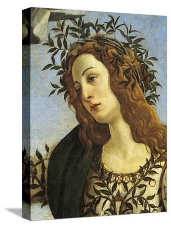 sandro-botticelli-figure-of-minerva-detail-from-pallas-taming-centaur-circa-1482