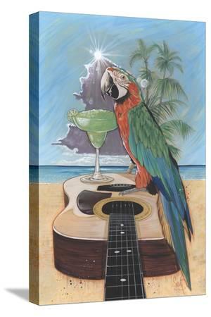 scott-westmoreland-macaw-garita