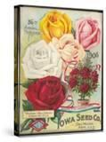 Seed Catalog Captions (2012): Iowa Seed Co Des Moines  Iowa 36th Annual Catalogue  1906