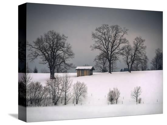 sheila-haddad-winter-scene-hill-and-trees-hut-and-foreboding-sky
