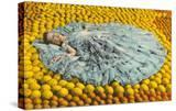 Southern Belle Lying on Oranges  Florida