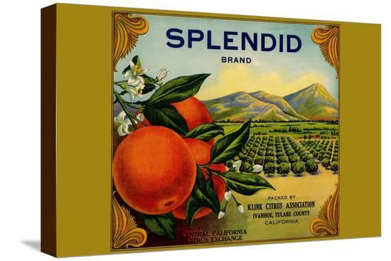 splendid-brand-citrus