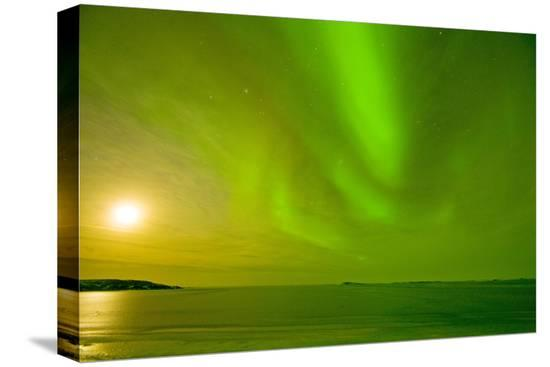 steve-kazlowski-green-northern-lights-over-the-sea-beaufort-sea-anwr-alaska-usa