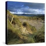 Sand Dunes  Strandhill  County Sligo  Connacht  Repubic of Ireland  Europe