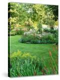 Island Beds Planted with Lychnis  Rosa  Caltha Palustris (Kingcups)  Iris & Polygonium