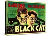 The Black Cat  Boris Karloff  Bela Lugosi  1934