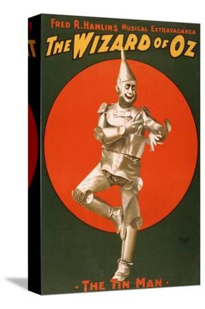 the-tin-man-from-the-wizard-of-oz