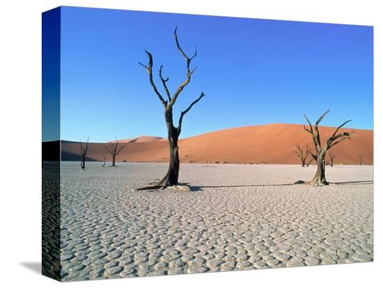 theo-allofs-desert-in-namib-naukluft-park-namibia