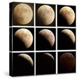 This Sequence of Photographs Shows the Total Eclipse of the Moon over Denver  Colorado