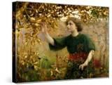 A Golden Dream  1893