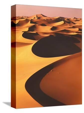 thonig-algeria-sahara-great-western-erg-oasis