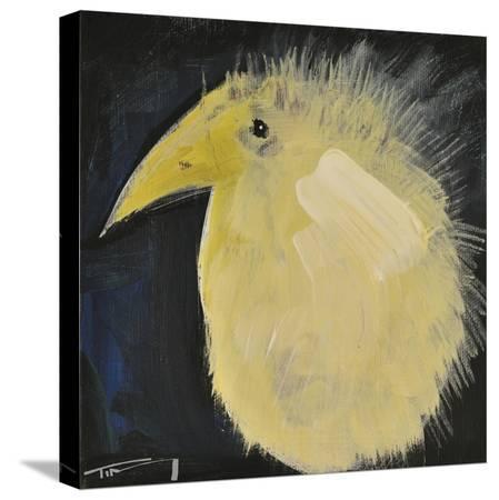 tim-nyberg-yellow-fuzzy-bird