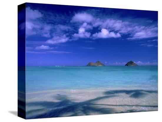 tomas-del-amo-shadow-of-palm-trees-on-lanikai-beach-oahu-hi