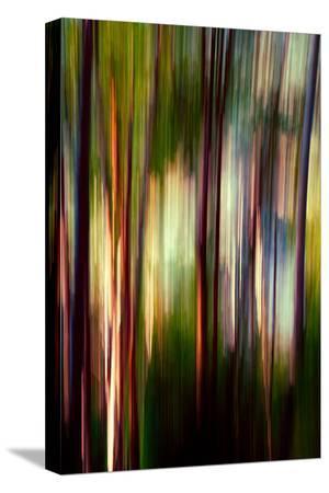 ursula-abresch-trees