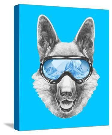 victoria-novak-portrait-of-german-shepherd-with-ski-goggles-hand-drawn-illustration