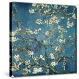 Almond Blossom  1890 (Deep Teal Color Variation)
