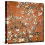 Almond Blossom  1890 (Orange Color Variation)