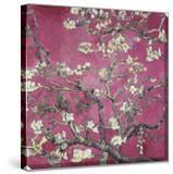 Almond Blossom  1890 (Pink Color Variation)