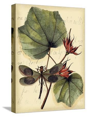 vision-studio-petite-dragonflies-i