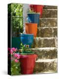 Staircase with Flower Planters  Fiskardo  Kefalonia  Ionian Islands  Greece