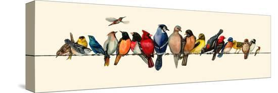 wendy-russell-bird-menagerie-iii