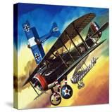 Freedom of the Skies: Yankee Super Ace Edward Rickenbacker