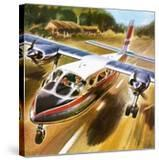 Take-Off for Success: the Britten-Norman Islander